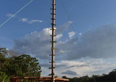 Hifi muss natürlich auch gleich den Mast hoch klettern.