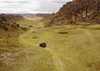 Bosque del piedra, Peru
