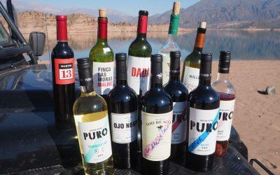 Kulturschock mit Weintherapie