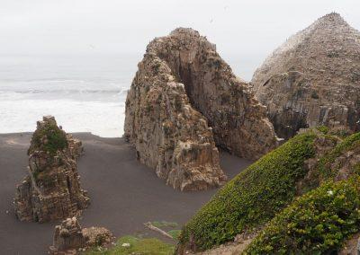 An der Küste entdecken wir diese Felsformationen…