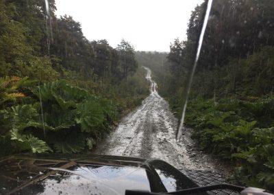 Und dann weiter in den Nationalpark Tantauco.