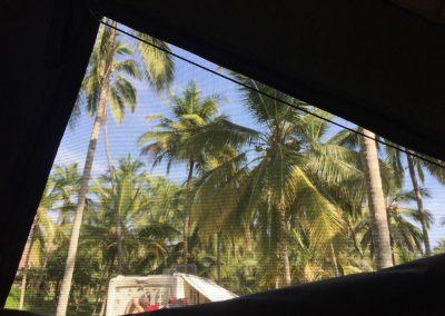 Der Blick aus dem Fenster ist karibisch.