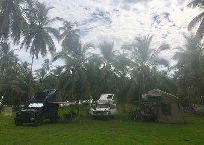 Drei Landy unter den Palmen im Tayronapark.