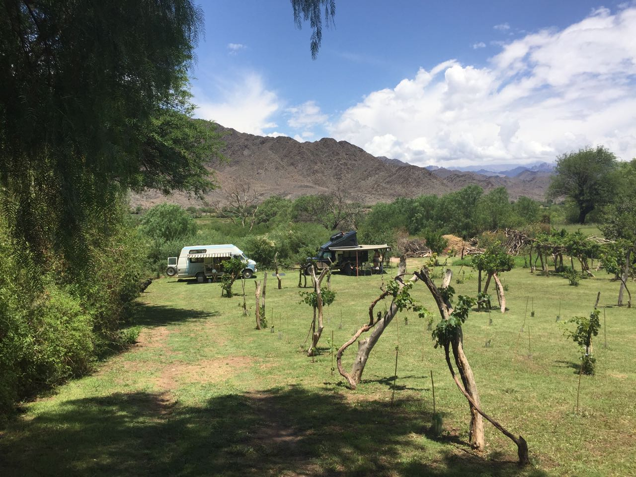 Auf dem Camping Utopia steht man idyllisch zwischen den Reben.