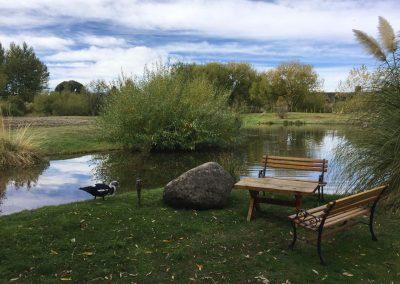 …mitten in den Reben und mit einem idyllischen Teich.