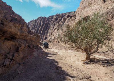 Vor Fiambala übernachten wir zwischen imposanten Felsen.
