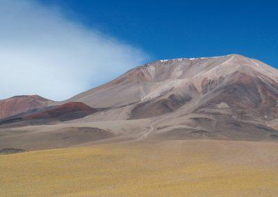In sanften Farben zieht die Landschaft vorbei.