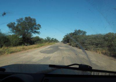 Wir fahren in den Chaco rein und sehen nur Buschland.