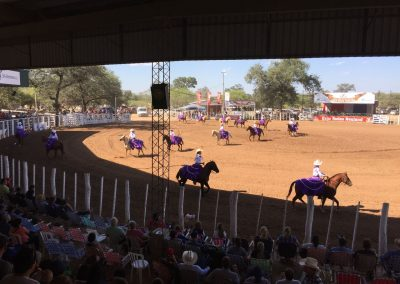 Die Rodeoschulen führen vor, was sie so alles können.