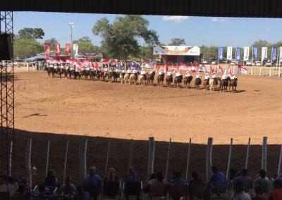 Fahnenritt der Rodeoschule Neuland