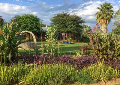 Aschi war früher Gärtner und und legt auch heute noch wunderschöne Gärten an.