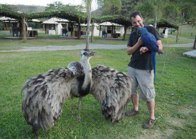 Im Refugio Canaã sind die Tiere sehr zutraulich.