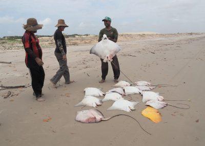 Die Fischer zeigen uns stolz ihren Fang.