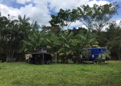 Ein schönes Plätzchen unter Palmen haben wir hier.