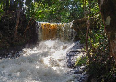 Und gleich noch einer. In dieser Region hat es duzende Wasserfälle.