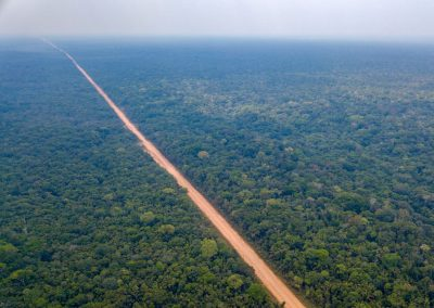 Die BR319 verläuft schnurstracks quer durch den Amazonasdschungel.