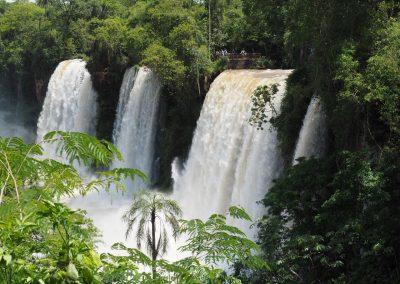 Welche Wassermassen da durch den Dschungel fliessen!