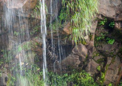 Geschützt hinter dem Wasserfall klammern sich Vögel an die Felsen. Seht ihr sie?