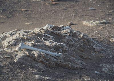 Früher wurden die Gräber alle ausgeraubt. Bis heute sieht man daher überall blanke Knochen und Textilreste herumliegen…!