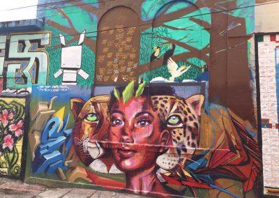 Überall findet man wunderschöne und farbenprächtige Grafittikunst.