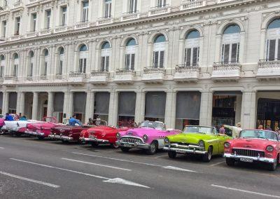 Die farbigen und schönen «Almendron» stehen für die Touristen bereit.