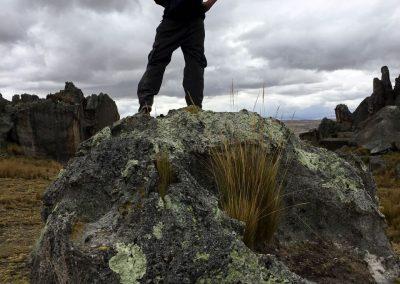 Eroberer Hifi auf dem Aussichtspunkt.