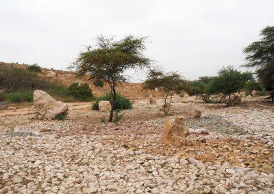 Eine Manhstätte an frühere Ruinen, welche hier einfach weggebaggert wurden, um Strassen zu bauen.