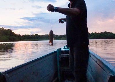 Irgendwann fängt auch Hifi seinen Fisch!