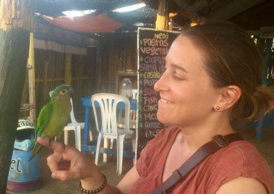 Papagei «Lorenzo» hat uns besucht