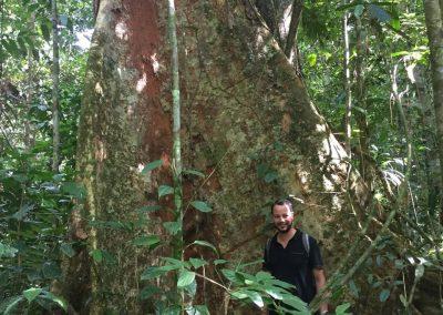 Ein Männlein steht im Walde ganz klein und verloren…