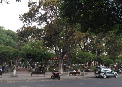 …belebten Stadtparks…