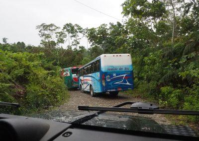 Und da sind die Busse… am Warten.